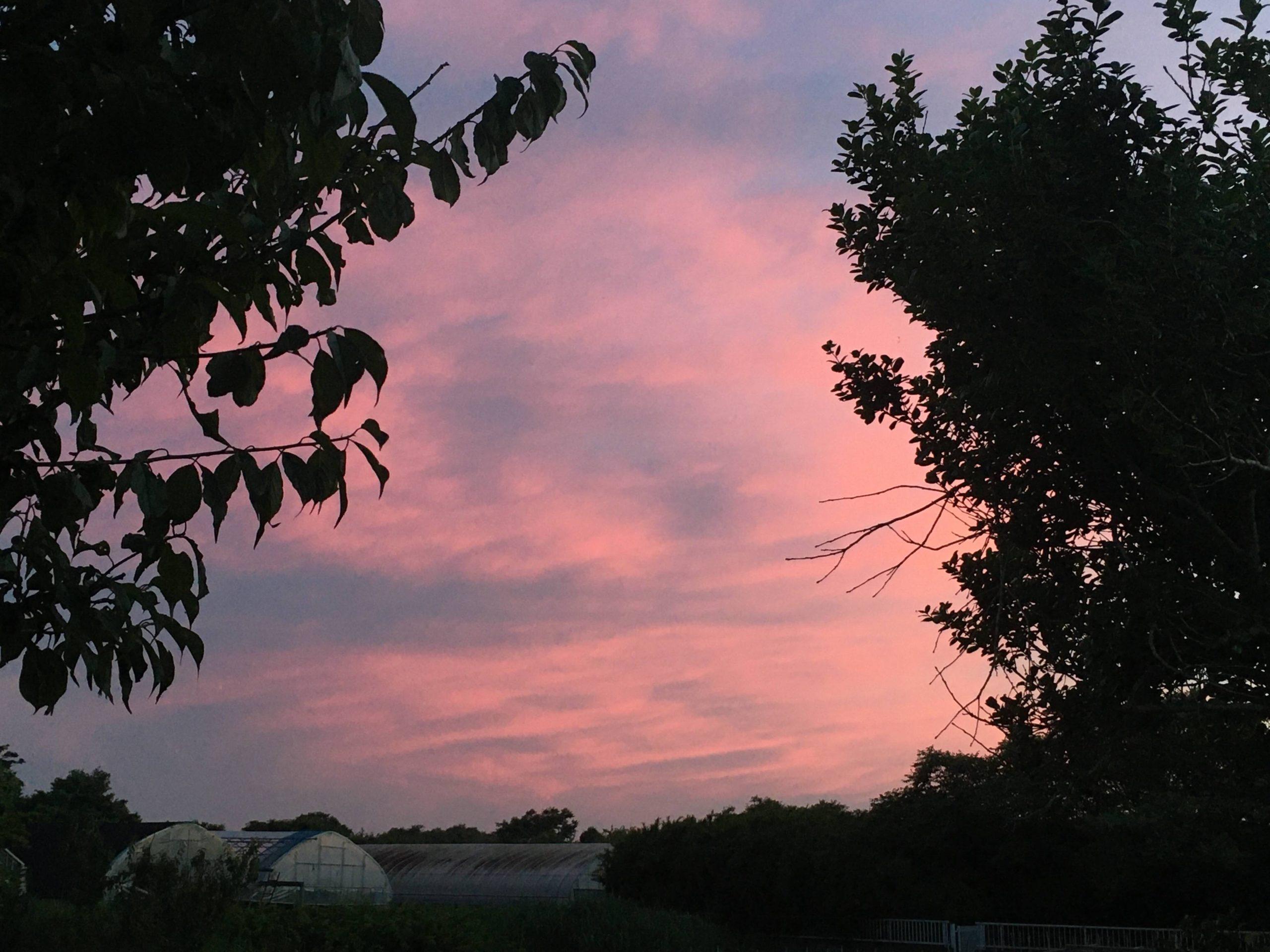 sunset0617